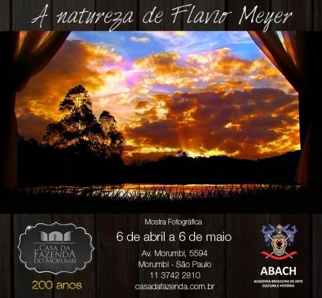 Exposição Natureza de Flávio Meyer